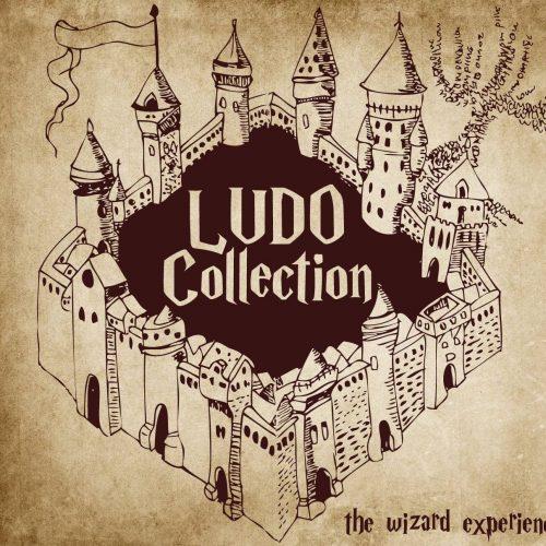 Ludo collection